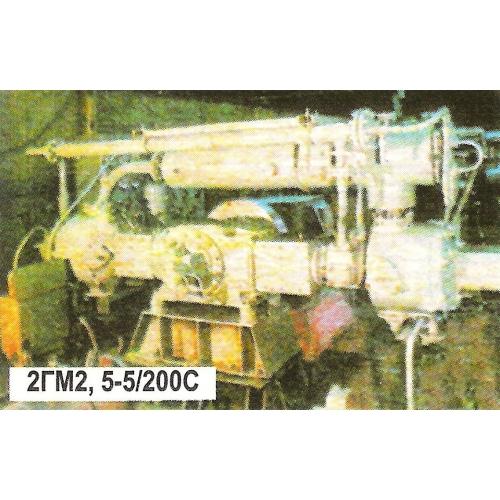 Компрессор стационарный поршневой газовый 2ГМ2,5-5/200С